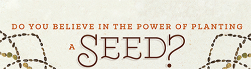 facebook power of seed banner