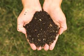 The Dirt on Dirt: All Encompassing Soil