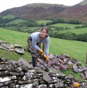 Seeds Blog Announcing A Series Of Dry Stack Stone Wall Works In March