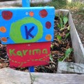 Musings from Karimah, a Community Gardener and garden teacher