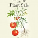Reinvigorate your Spring Garden with SEEDS Spring Plant Sale