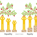 Values: Equity