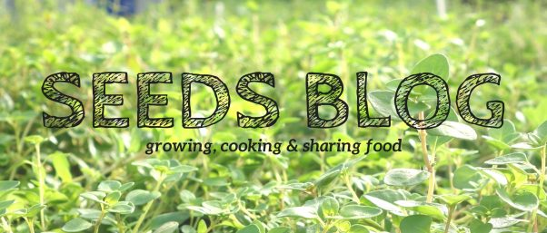 SEEDS Blog